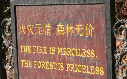 mercilessfire.jpg